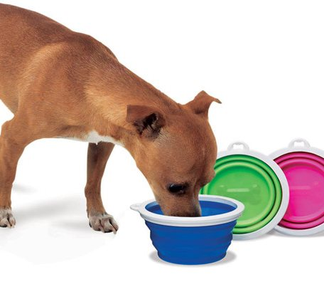 SPB010 Silicone Pet Collapsible Bowl