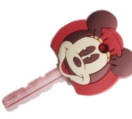 OEM Disney Key Cover