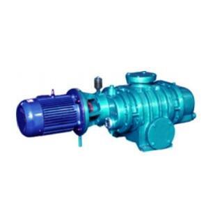 Root's Vacuum Pump